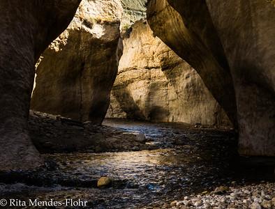 Wadi Hasa/ Nahal Zered