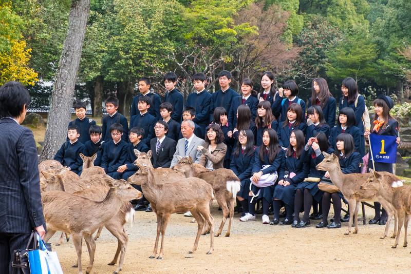 Nara Day 5 (317 of 374).jpg