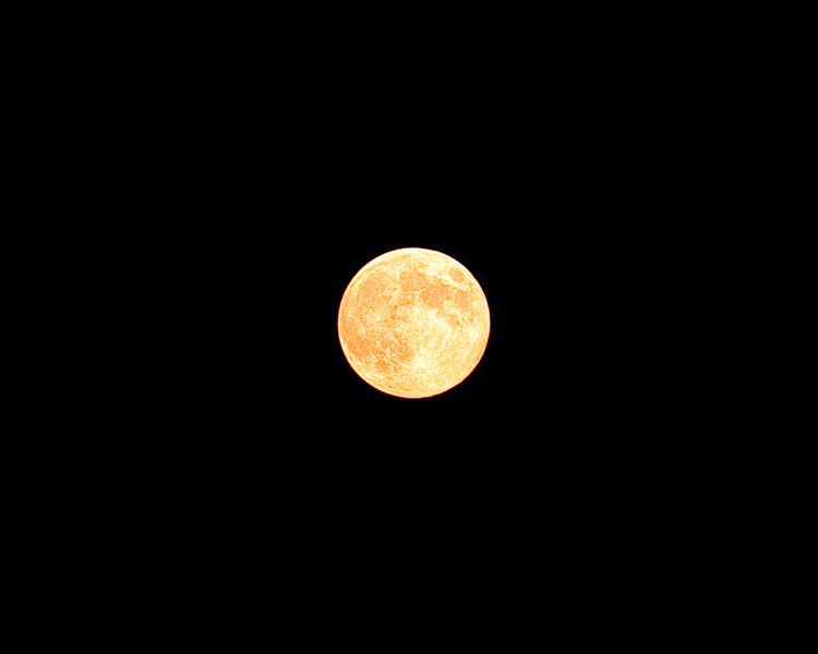 137 Michigan August 2013 - Moon crop.jpg