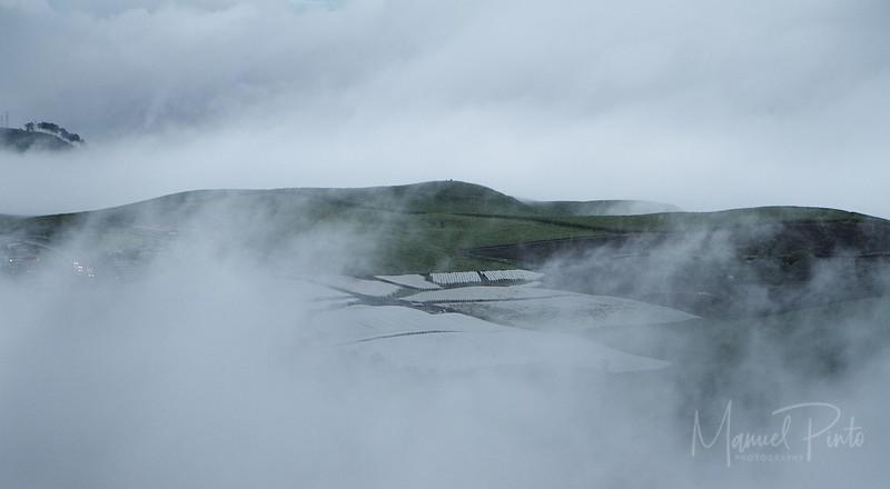 Foggy Landscapes