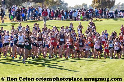 2016_1105 AZ State HS XC Championship
