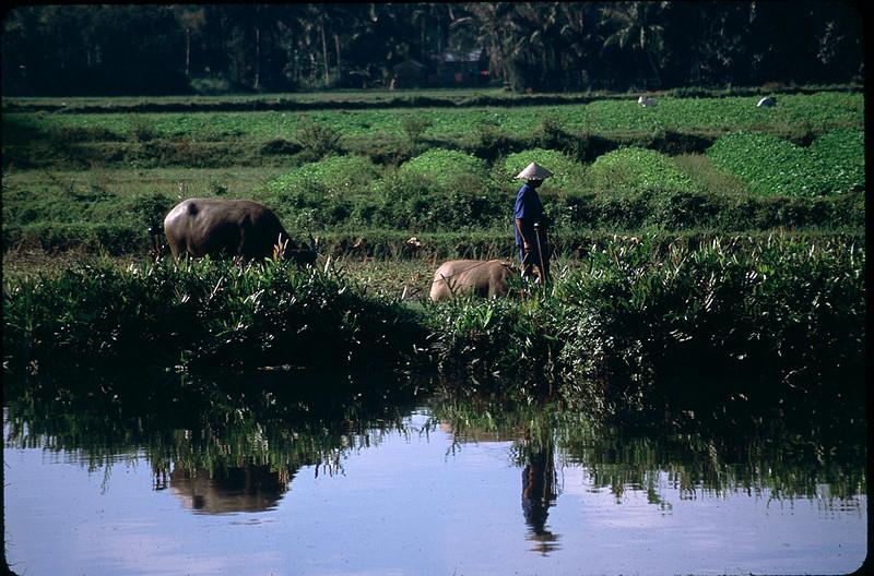 VietnamSingapore1_058.jpg