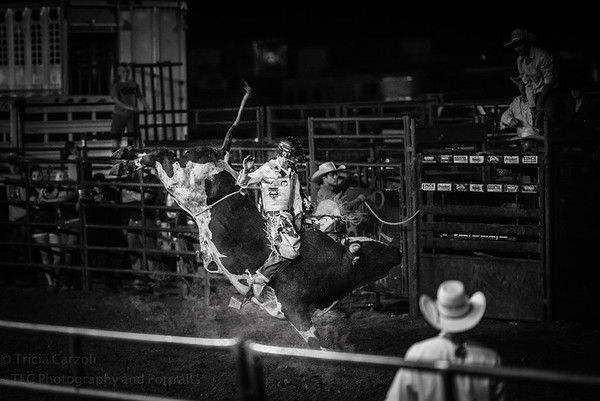 Cole Miller, Boone County Rodeo