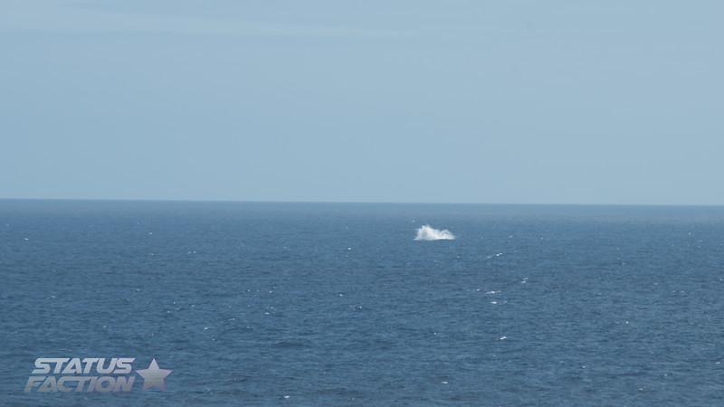 Alaska Cruise Day 1-105.jpg