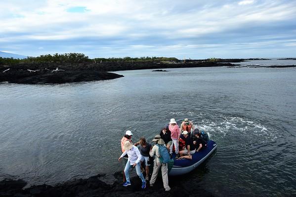Galapagos Day 7 - Moreno Point
