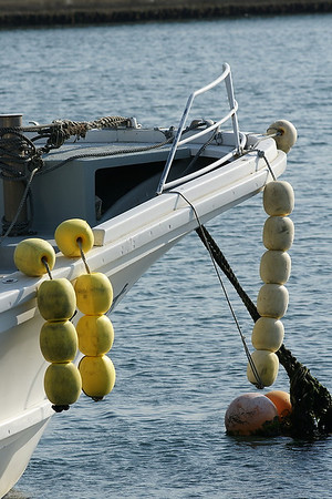 Sendai Fishing Harbor