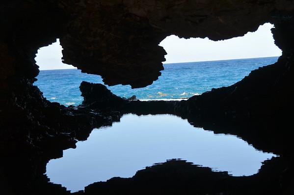Animal Flower Cave, Barbados (January 2017)