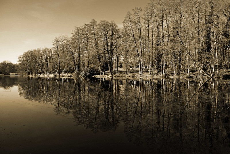 Stowe Gardens.jpg