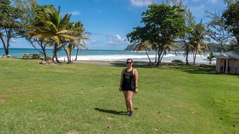 Saint-Lucia-Pigeon-Island-04.jpg
