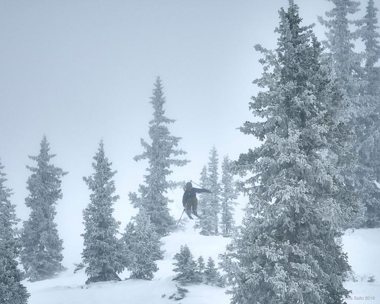 snowbird 5.jpg