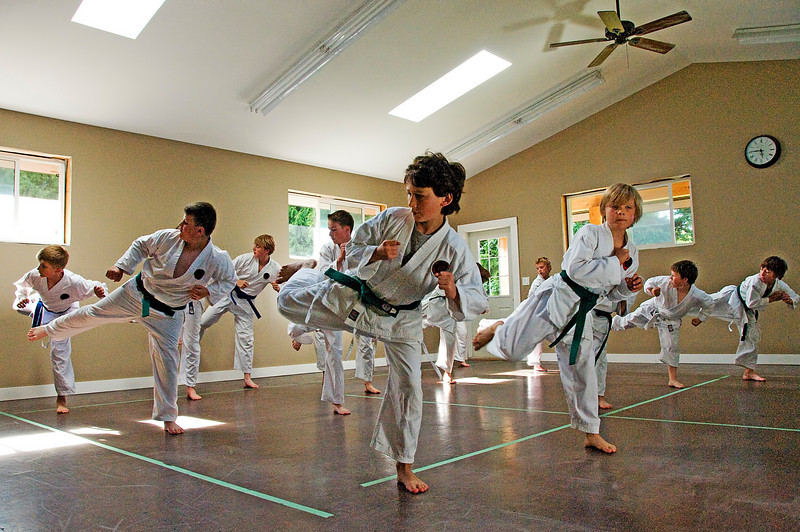 Nic(martial art)20100619A-6935A.jpg