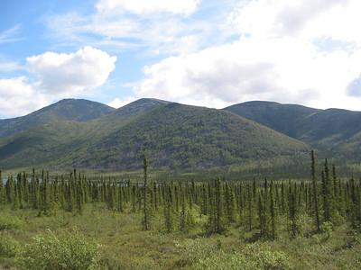 North To Alaska 2006