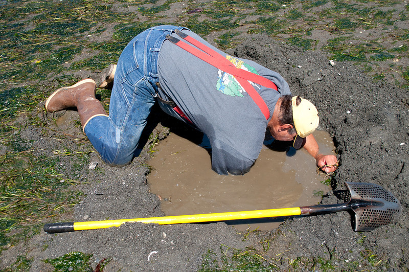 Some guy that digs for a geoduck clam; too much work for me.