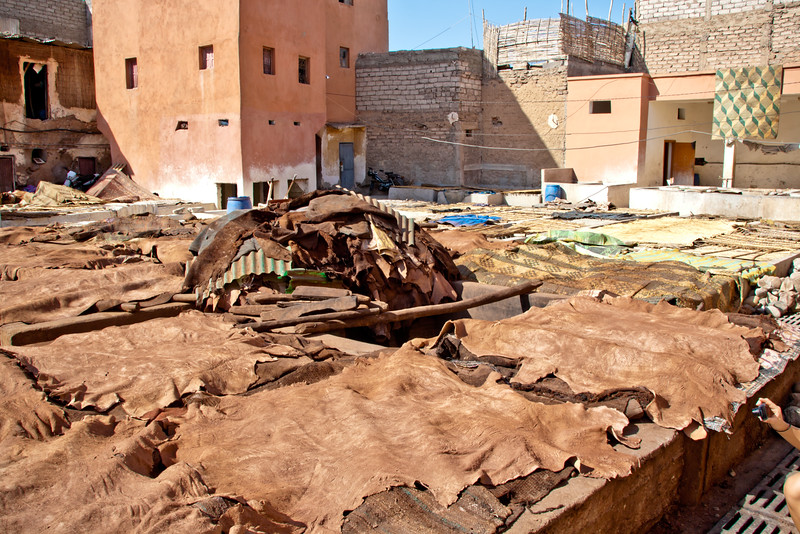 morocco_6207032874_o.jpg