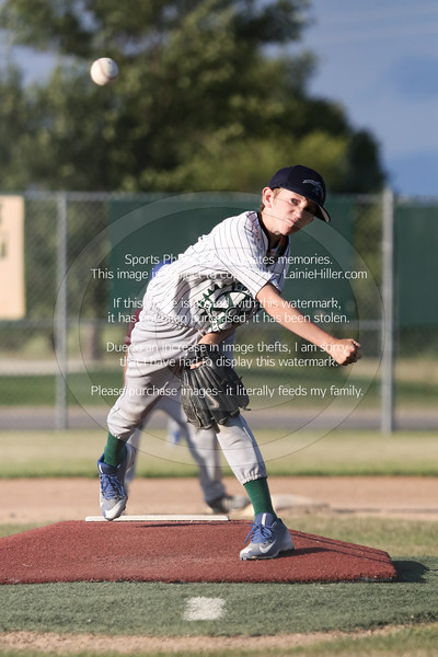 2018 BEMIDJI YOUTH LEAGUE BASEBALL