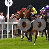 Ladies Evening & Coldplace, Horse Racing, Salisbury Racecourse,