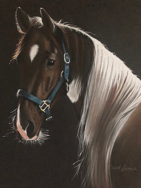 """""""Light"""" (conté and charcoal) by Carol Gromer"""