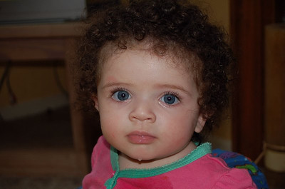 Layla 2008