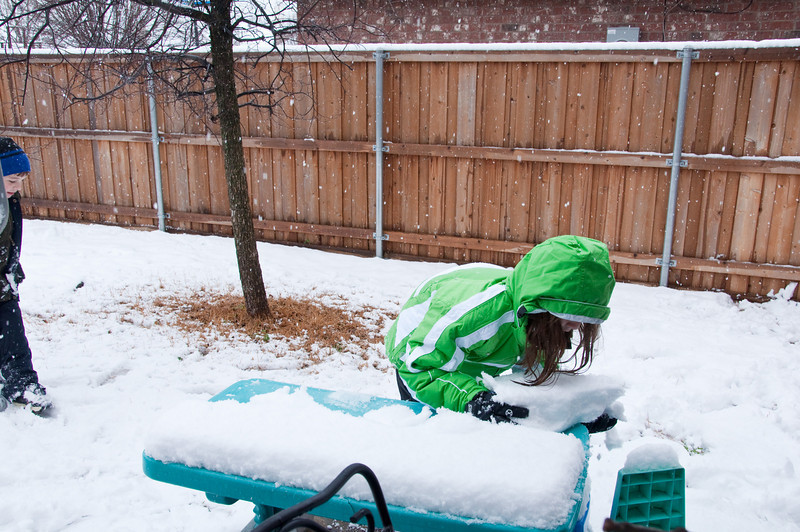 Snow - February 11, 2010 - Then the kids took off the snow and it came back in the next picture.
