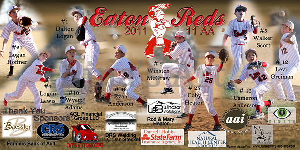 2012 Custom Team Banners
