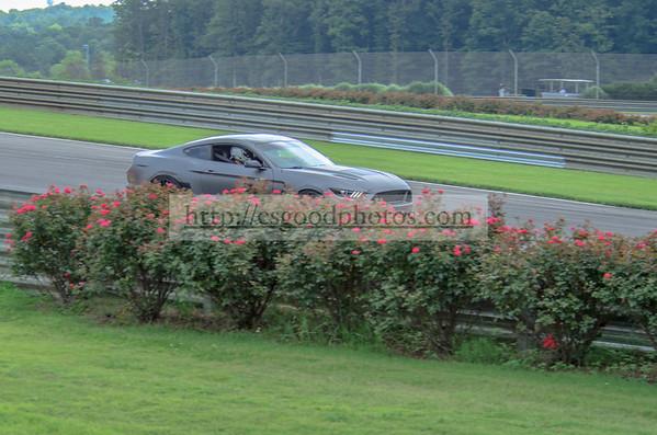 TF 78 Gray Mustang