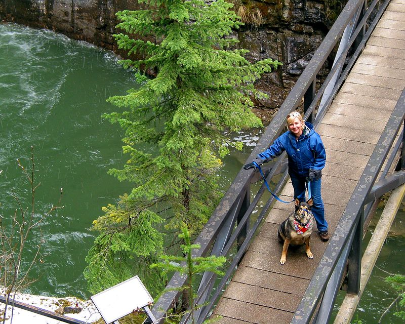 Buddy's great adventure takes him to the upper falls at Johnson Canyon, Banff National Park, Alberta