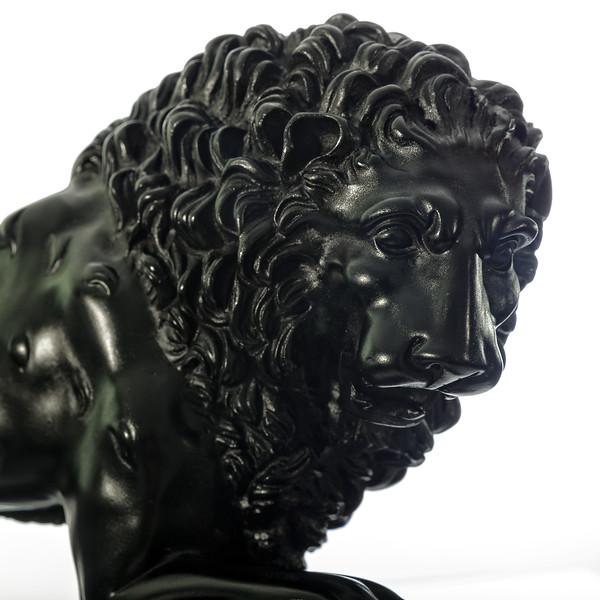 Madicci Lions-black-006.jpg