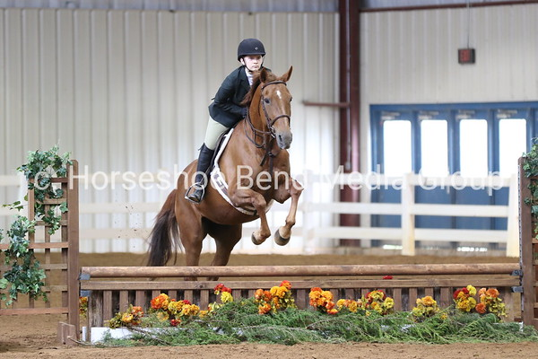 2019 House Mountain Spring Horse Show -- Sunday -- East Complex & Coliseum
