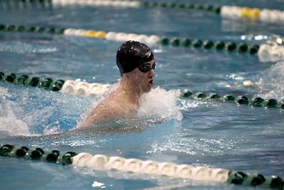 Boys State Swimming