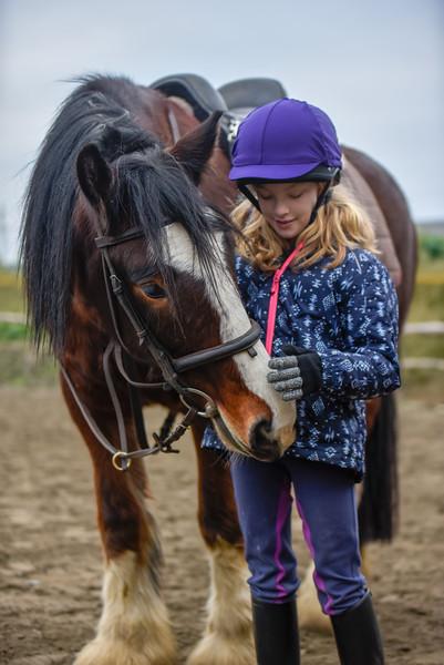 Corballis Farm Horse Trekking & Theraputic Riding Centre