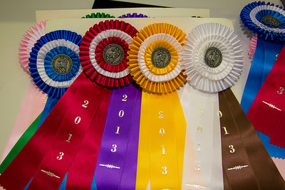Washington International Horse Show (2013)