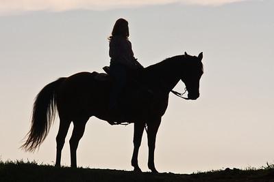 Equine-Human