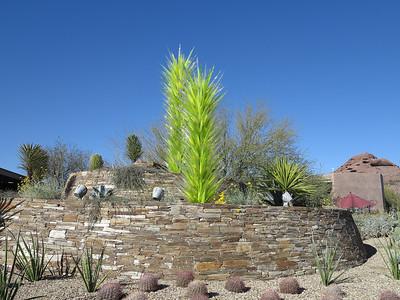 Desert Botanical Garden - 2012-02-25