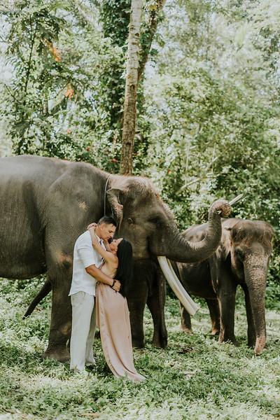 VTV_family_photoshoot_elephants_Bali_ (106).jpg