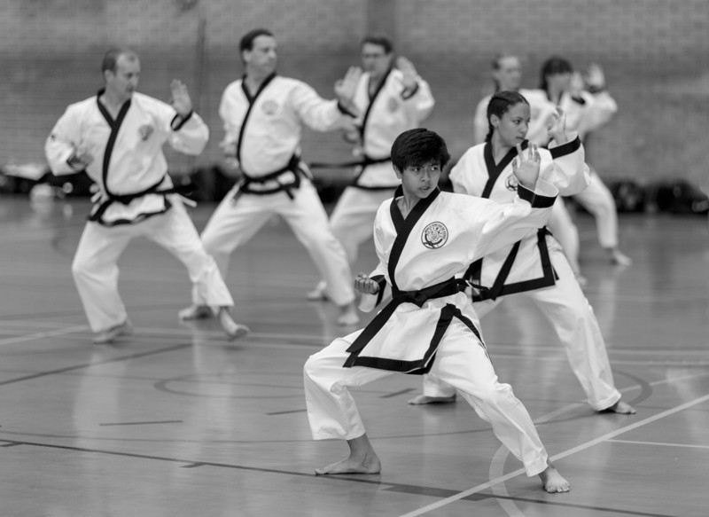 Tang Soo Do (Aug 2012)_7752465148_o.jpg