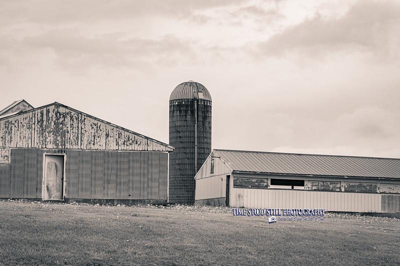 KC Landscape-84.jpg