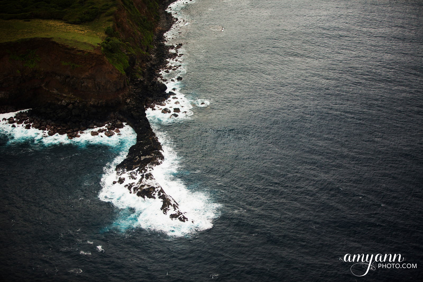 hawaii_amyannphoto_98