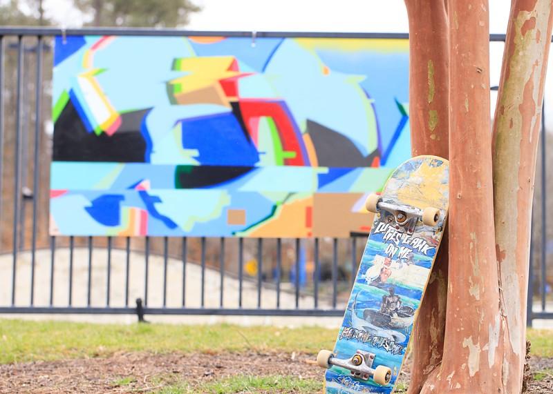 Brookrun_Skatepark-15.jpg