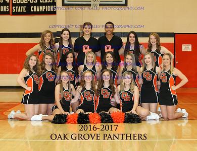 2016-2017 OGHS Cheerleading