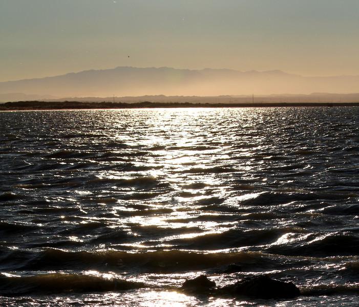 04 The Salton sea (52).JPG