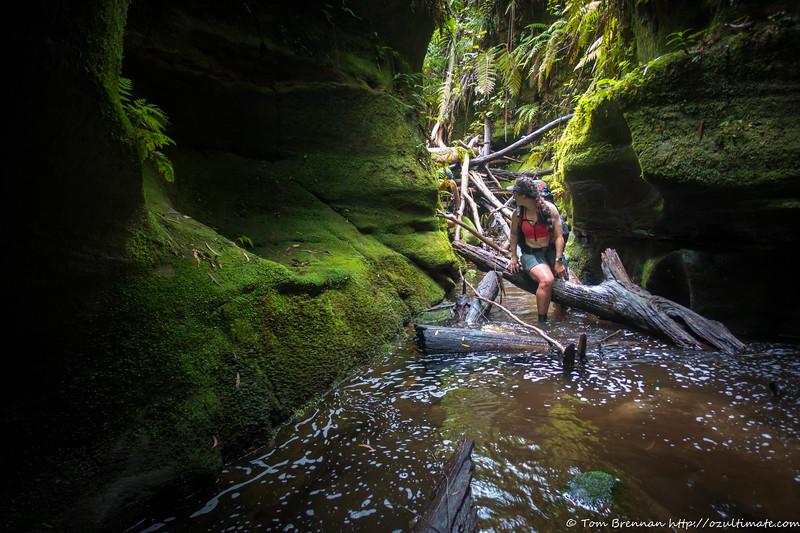 Lauren in the canyon