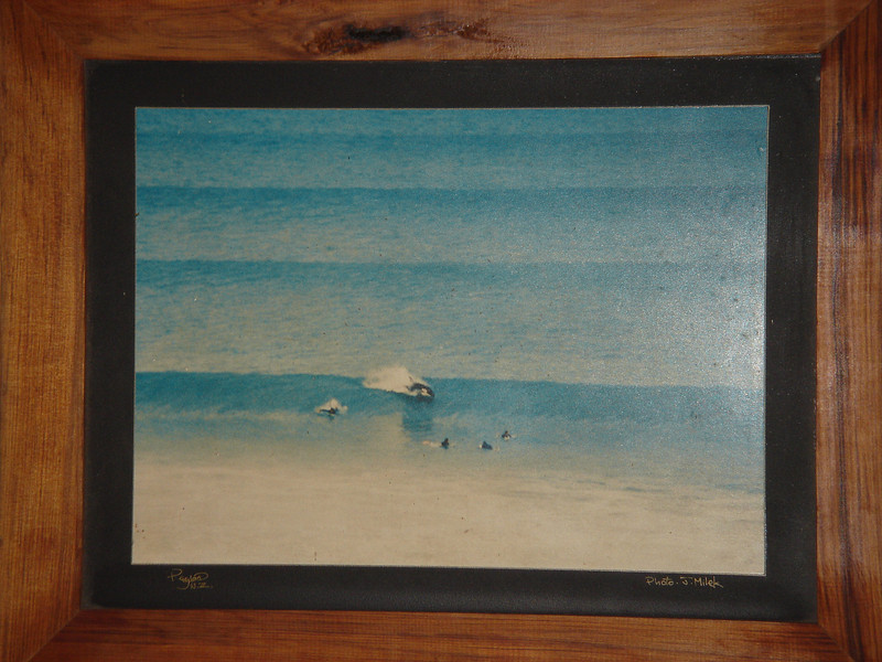 picture of a picture: this is from Christmas 1975 and a killer whale rode a wave with some surfers and then just swap away