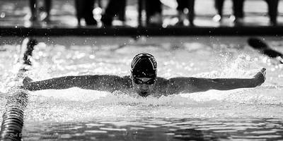 Bella Vista High School Swim
