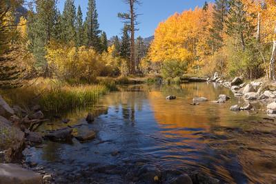 Sierra Nevada / Eastern Sierra