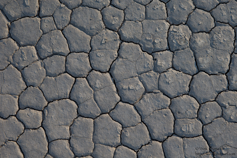 Racetrack Playa detail - Death Valley National Park, CA, USA