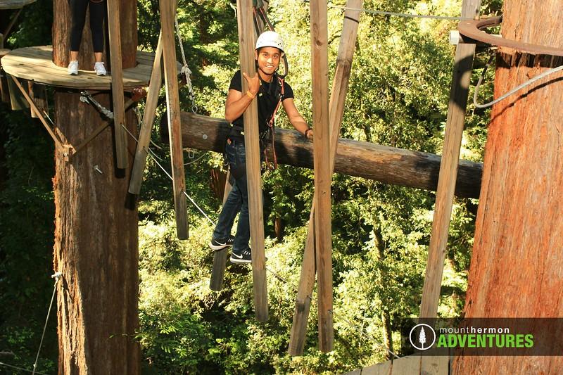 sequoiaportrait_1559086046757.jpg