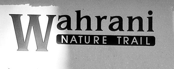 Wahrani Nature Trail 4/24/11