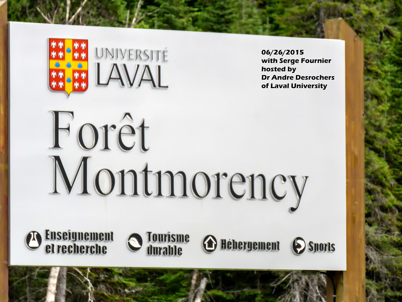 a626 808 IMG_1405 3T Foret Montmorency sign with visit info caption - Copy.jpg
