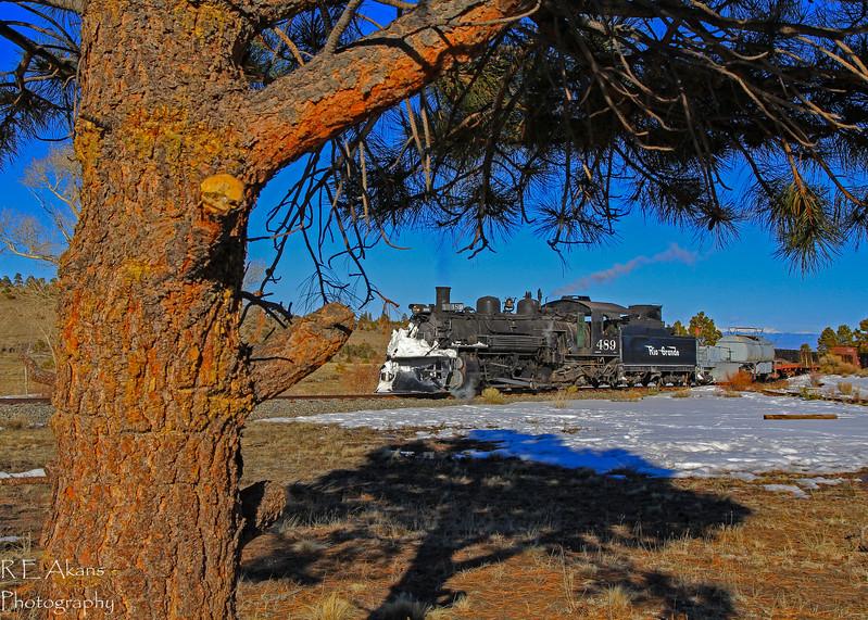 D&RG 489 Bighorn Wye 3 Mar14.jpg