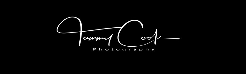 Tammy cook Photography Header.jpg
